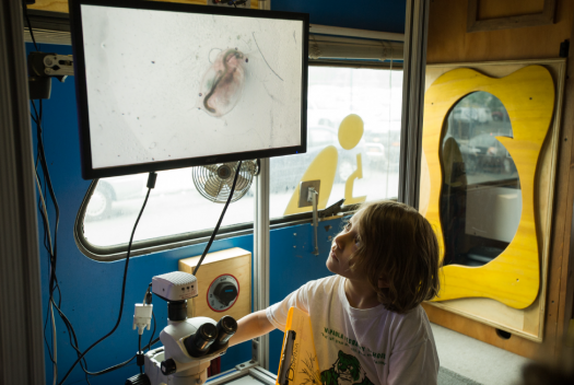 A student works with a microscope on the BioBus.