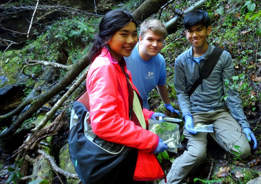 Nicole Rideout, Matthew Bailey, and John Nguyen collected endophytes from spray cliff plants in Gorges State Park.