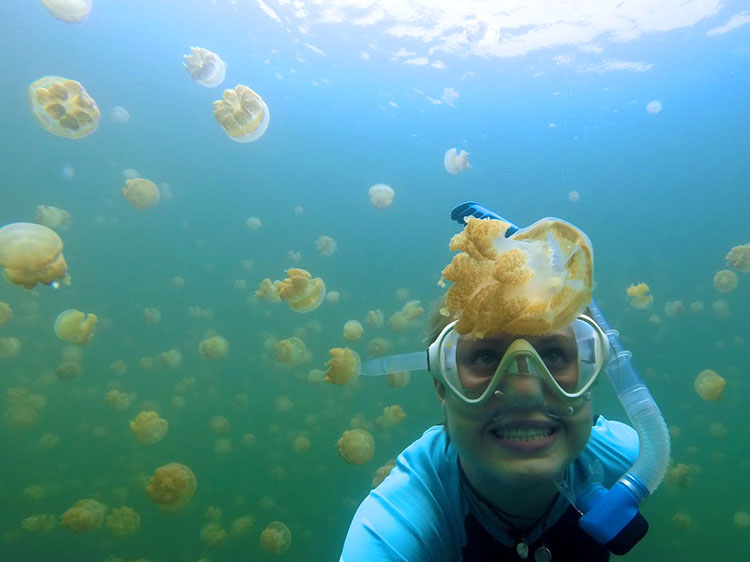 Meghan swims with jellyfish in Palau.