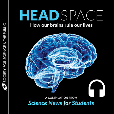 Head Space: How Our Brains Rule Our Lives