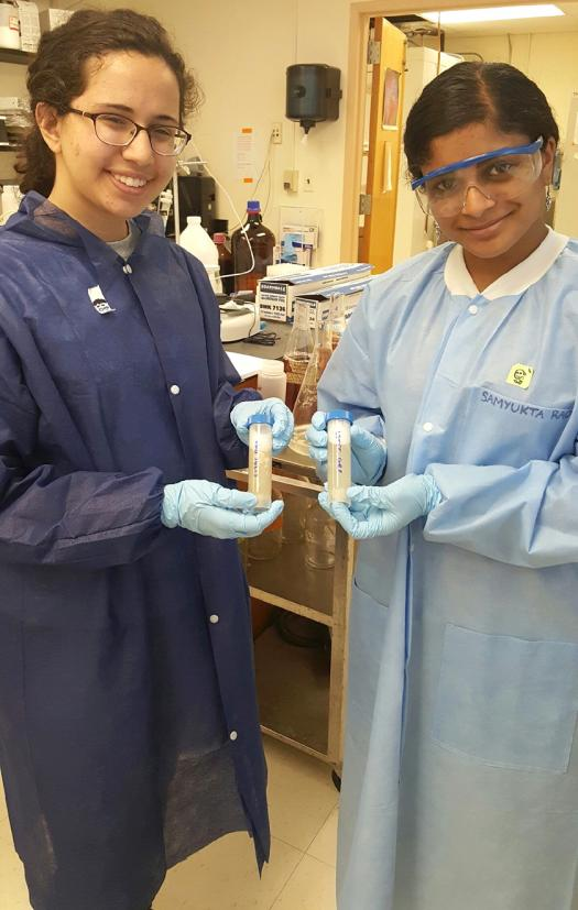 Niki and Samyukta interned at the Center for Advanced Sensor Technology at the University of Maryland-Baltimore County.
