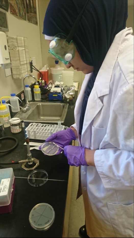 Saffeyya-Grace in the lab testing her remedies on petri dishes