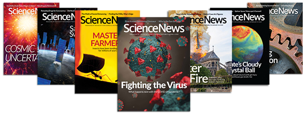Science News covers 2020