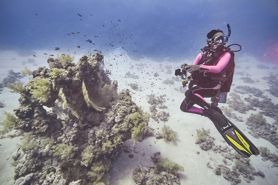STEM Action Grantee working underwater