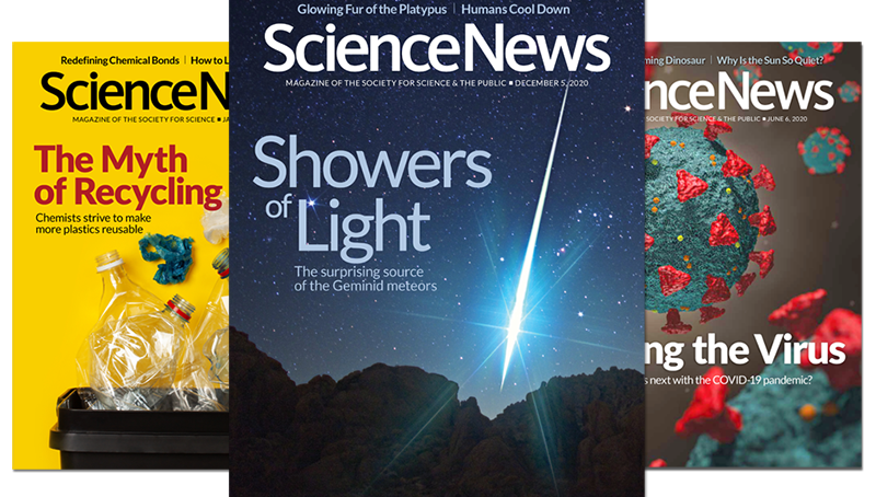 Science News covers 2020-2021